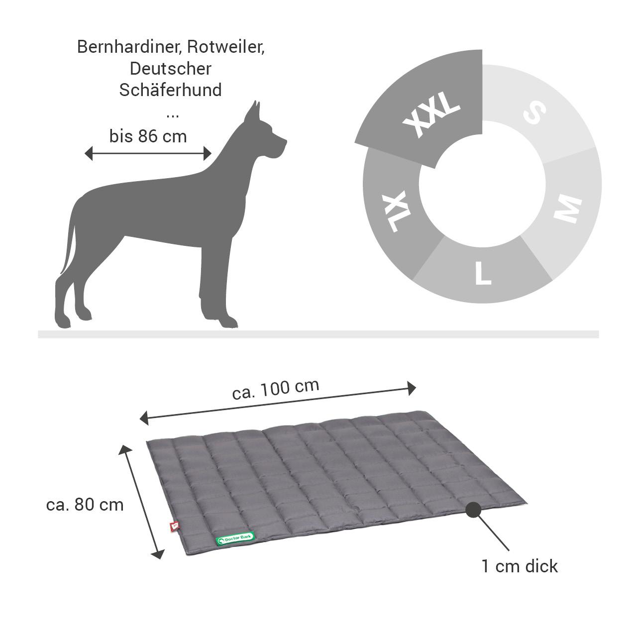 gepolsterte Einlegedecke für Doctor Bark Hundebett Gr. XXL - grau