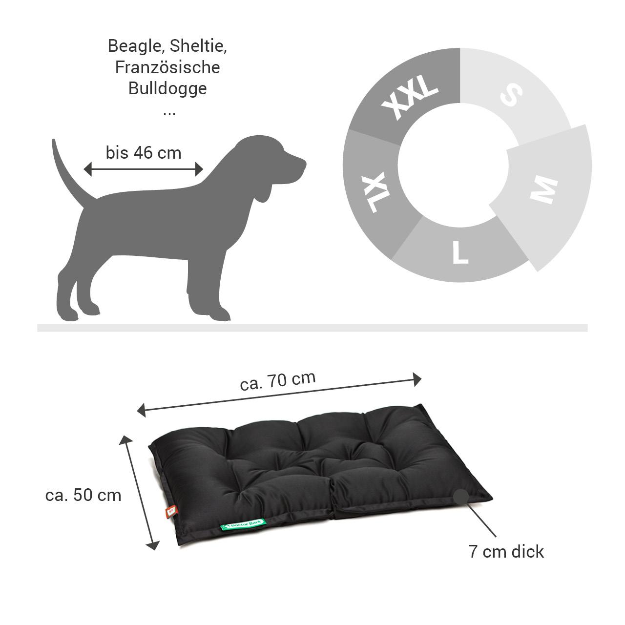 orthopädisches Einlegekissen für Doctor Bark Hundebett Gr. M - schwarz