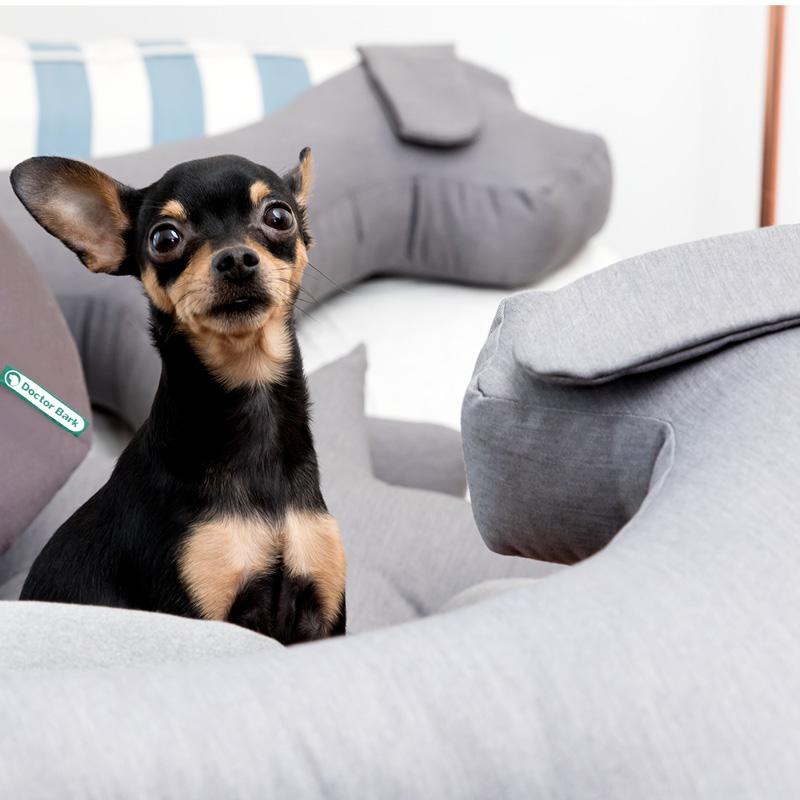 Doctor Bark - Hundespielzeug Toy Dog - waschbar bei 95°C