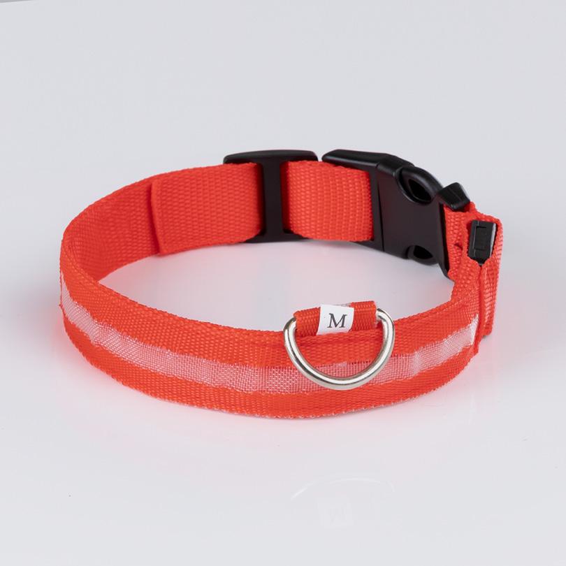 Leuchthalsband M rot