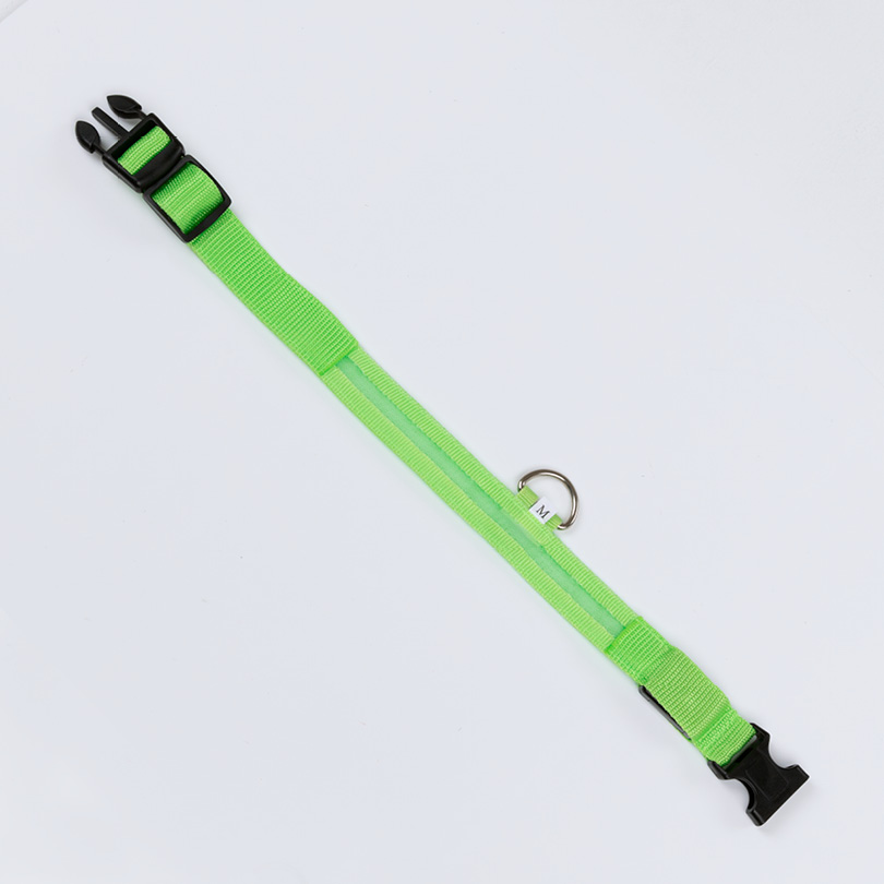 Leuchthalsband M grün