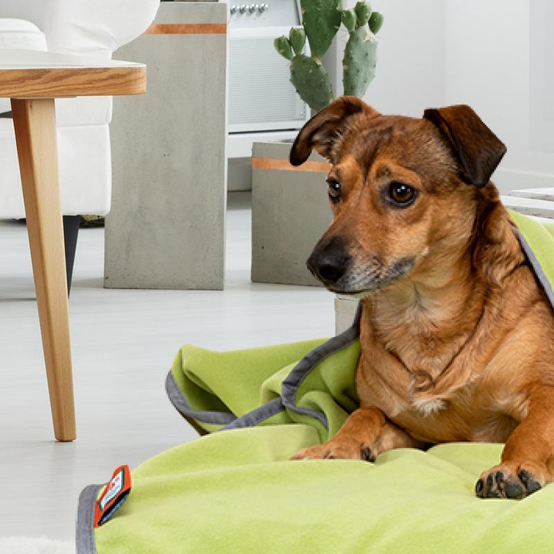 Doctor Bark - Hundedecken / Kuscheldecken - waschbar bei 95°C