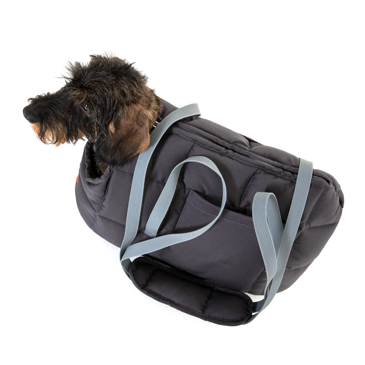 Hundetasche grau L