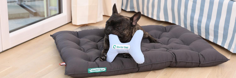 Doctor Bark - Hundespielzeug Toy Bone - waschbar bei 95°C